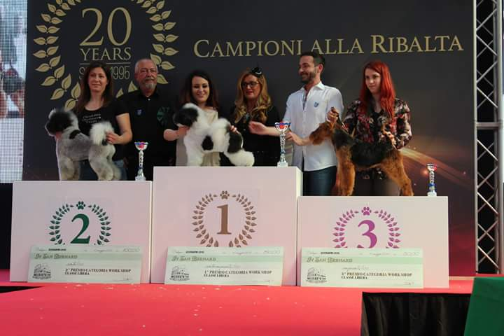 RomeoGrooming-terza-classificata