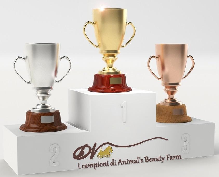 Le nostre premiazioni!!
