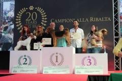 RomeoGrooming-seconda-classificata